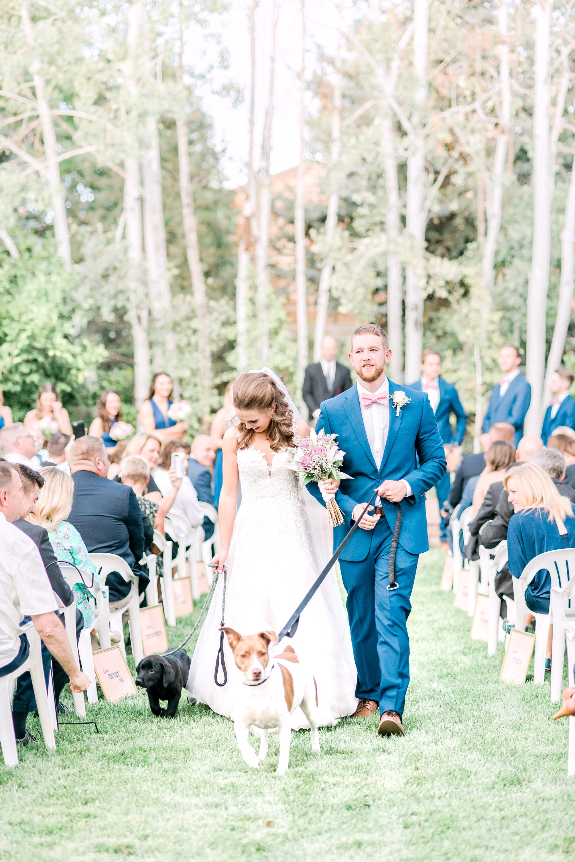 wedding with dogs, must have wedding photos, bride and groom walking down the aisle with dogs, puppies at weddings
