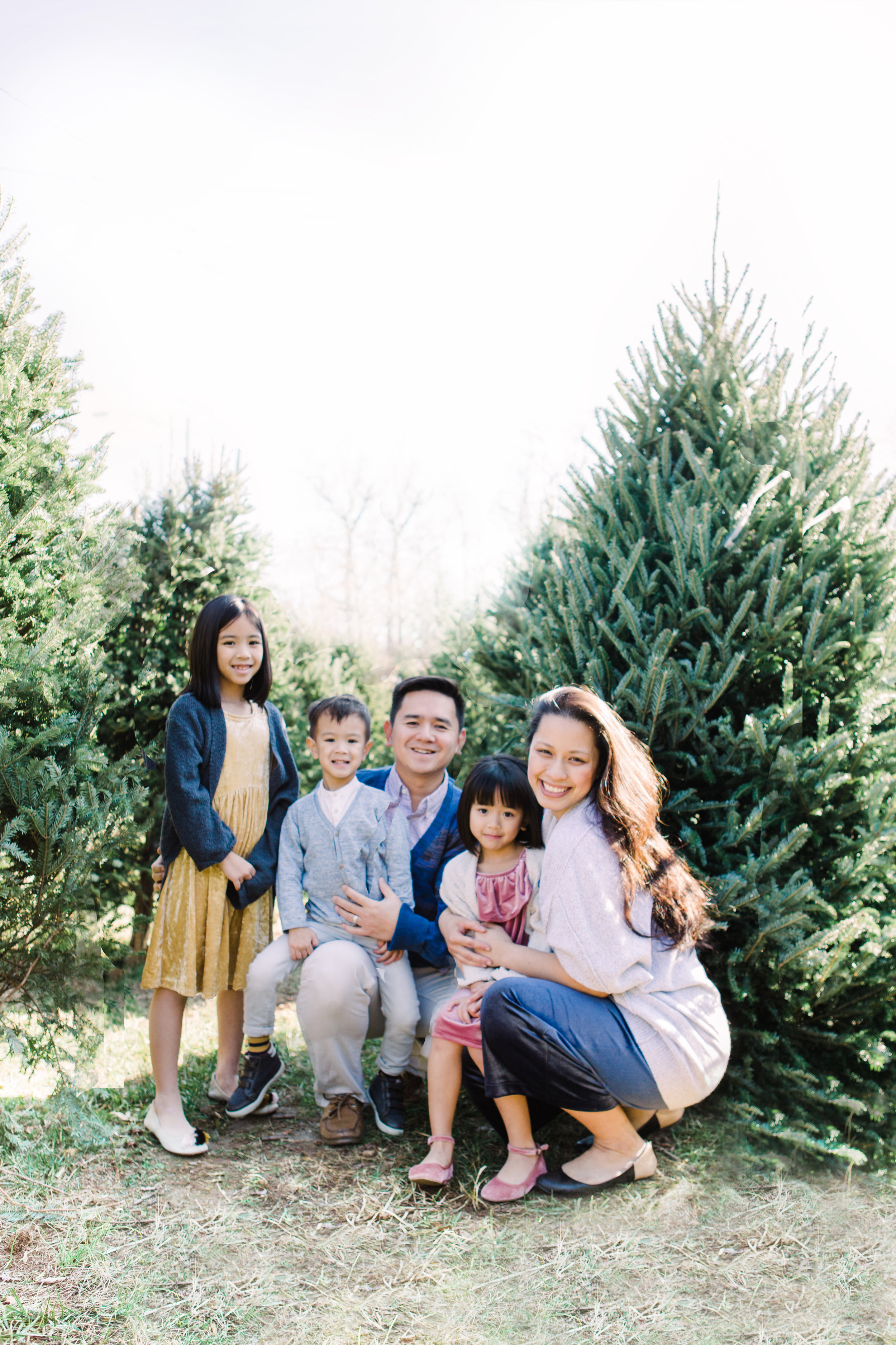 ktv family