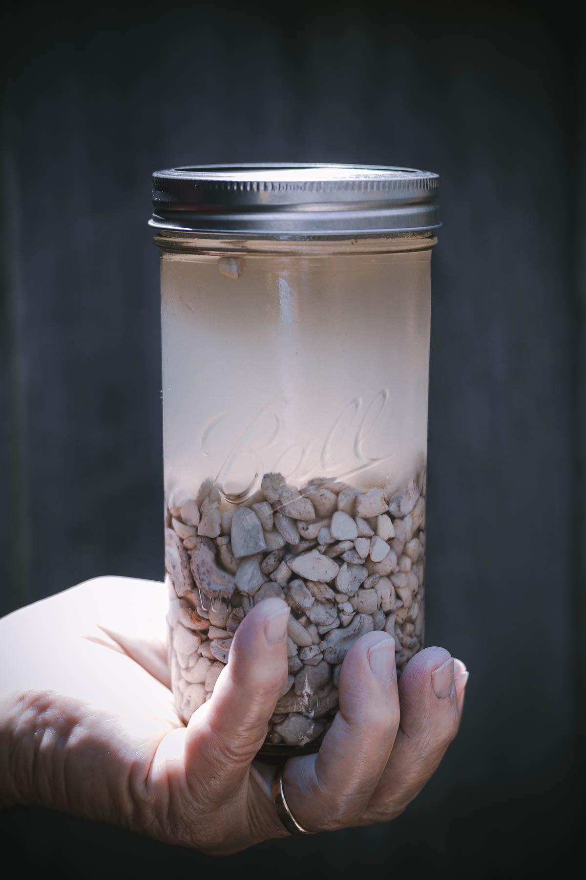 mississippi vegan chanterelle pasta-5770 soaked cashews.JPG