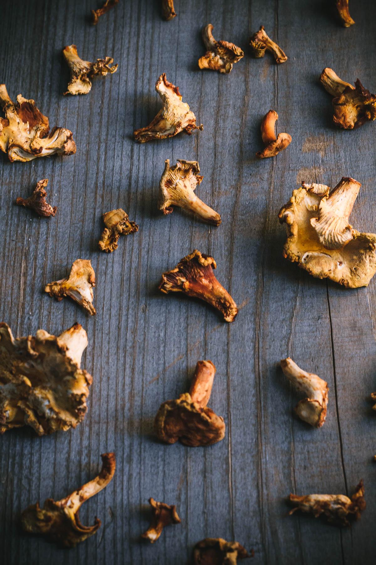 mississippi vegan chanterelle pasta-5823 foraged chanterelle mushrooms.JPG
