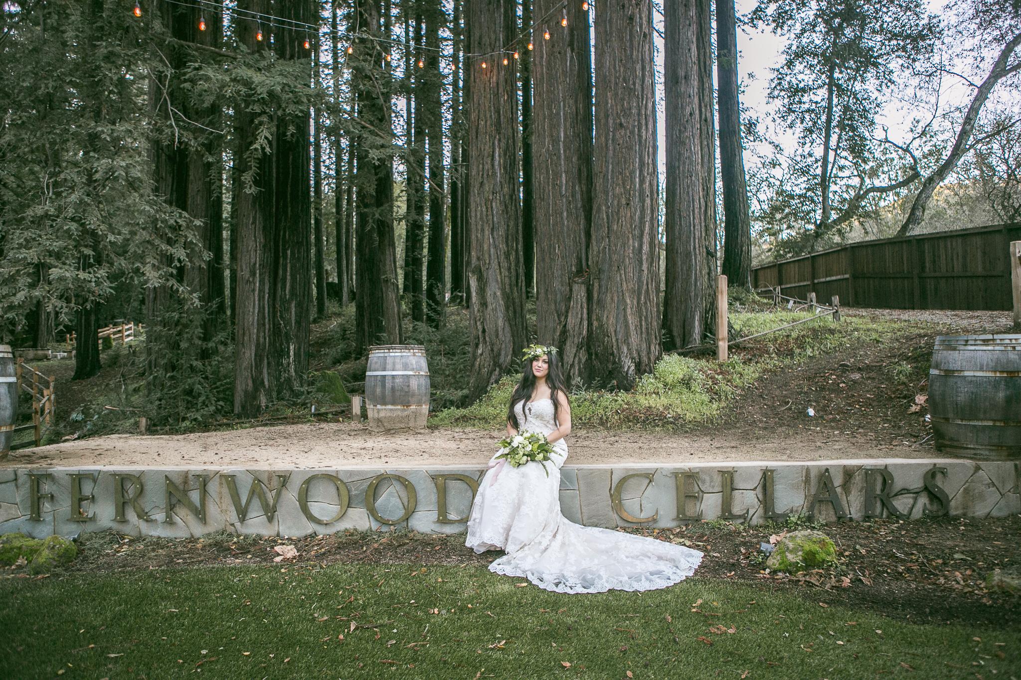 San Jose Bay Area Photographer-Redwood Retreat at Fernwood