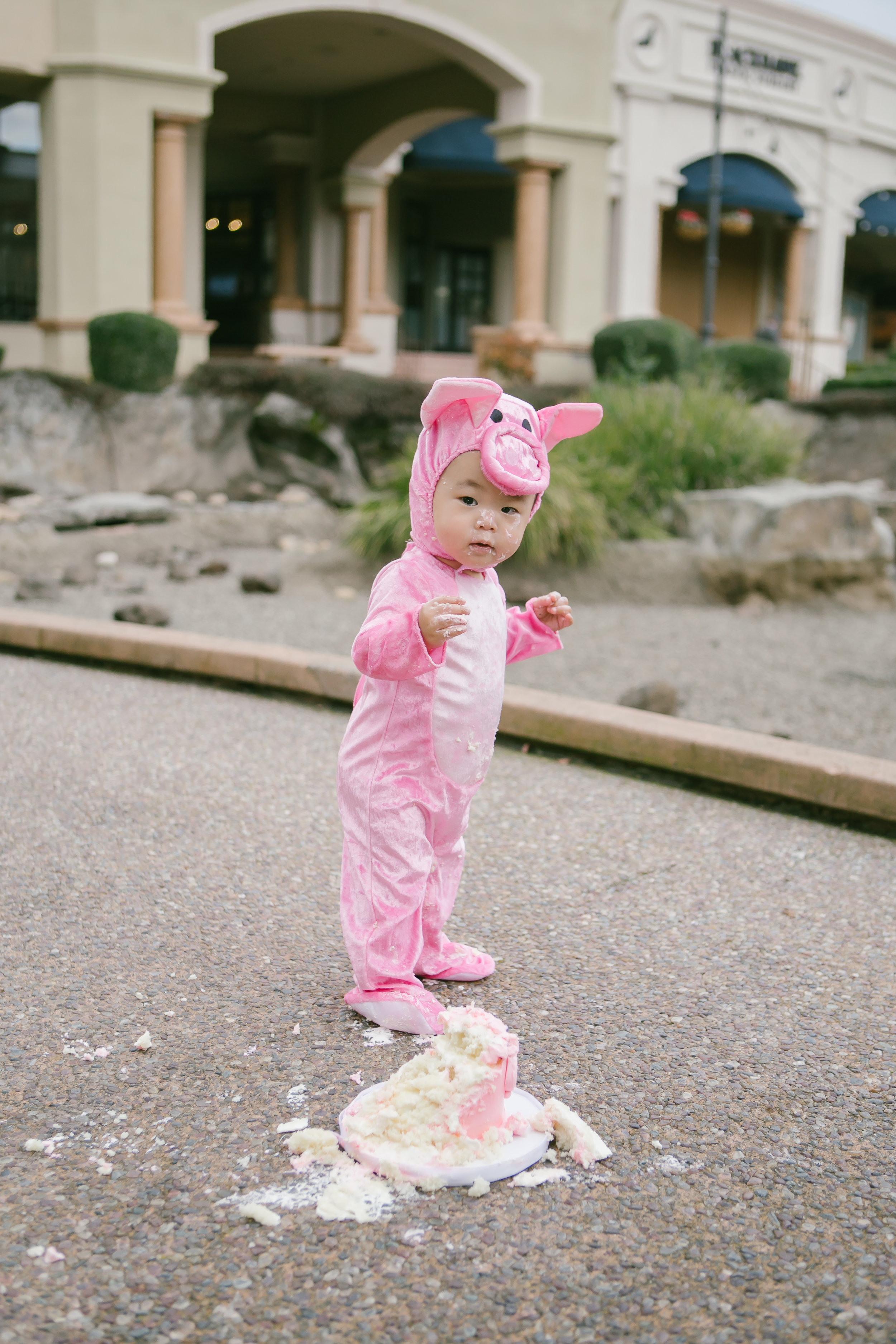 San Francisco Family Photography - Michelle Chang Photography