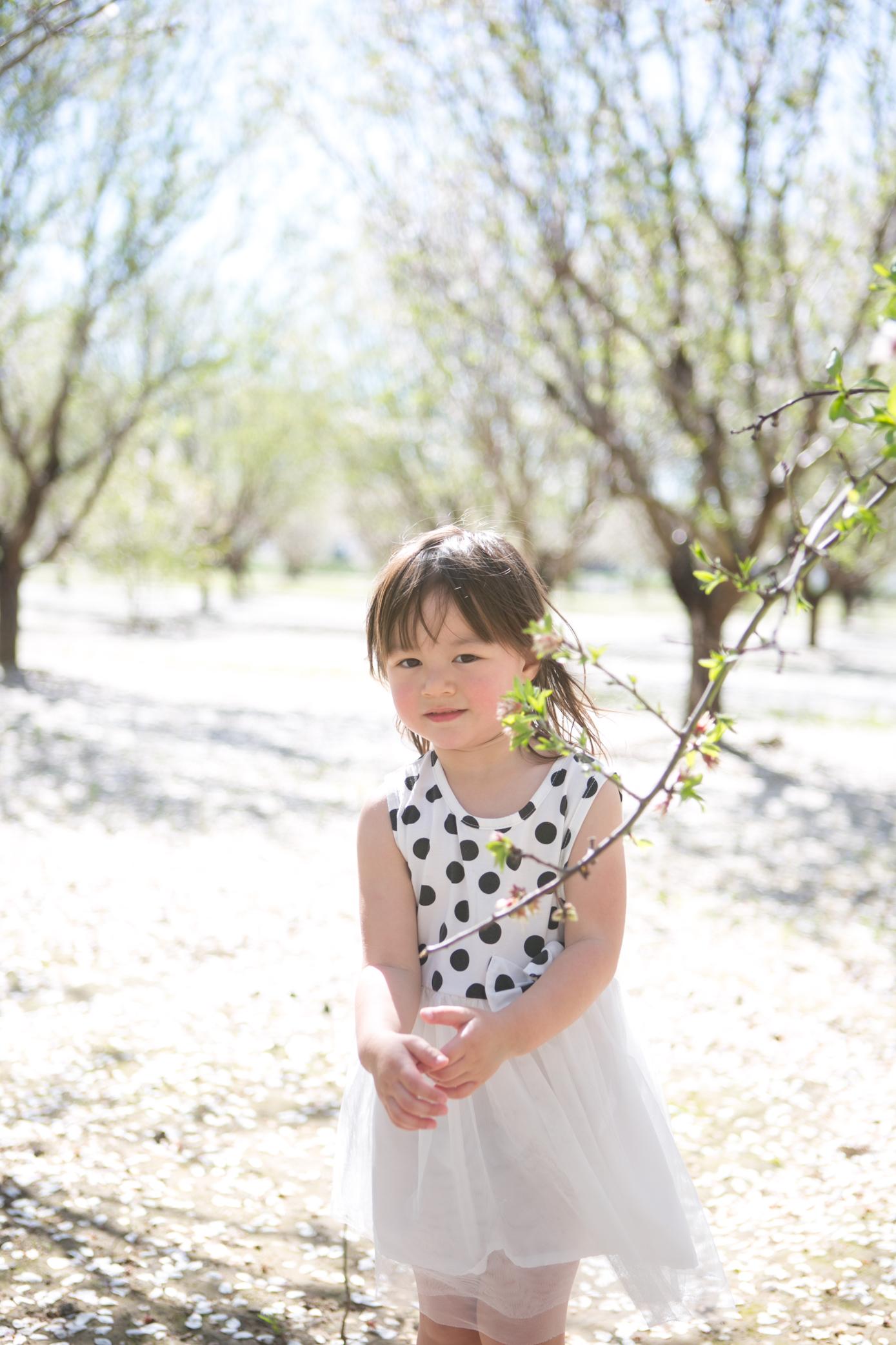 Roseville Family Photographer Lifestyle Family Photography - Michelle Chang Photography