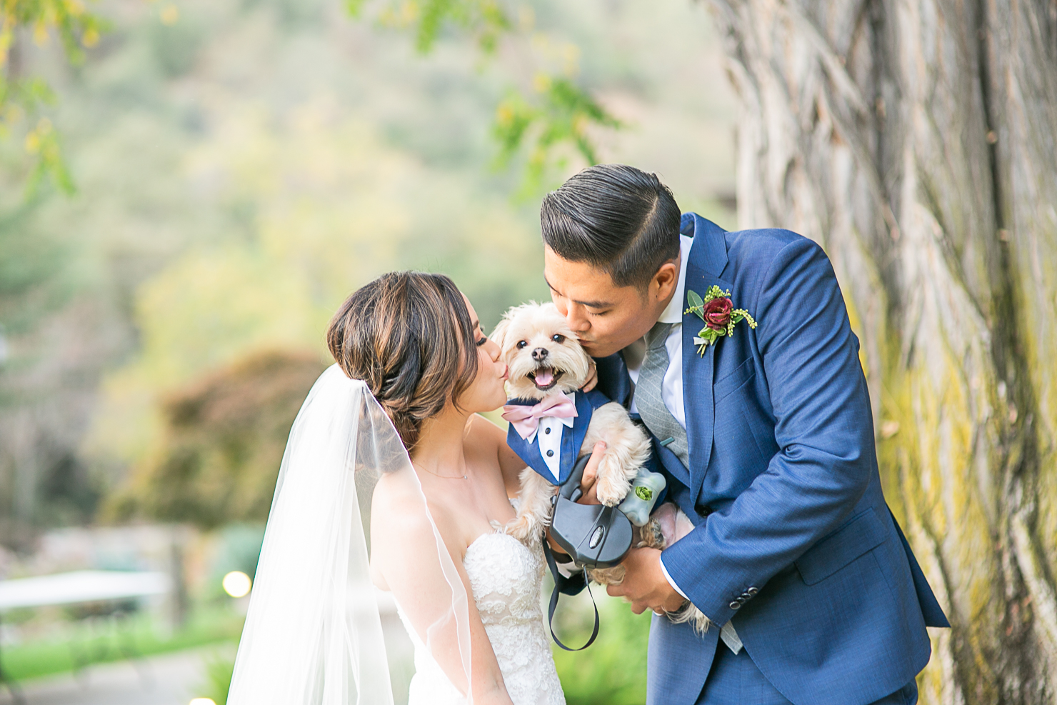 Elliston Vineyards Wedding - Michelle Chang Photography