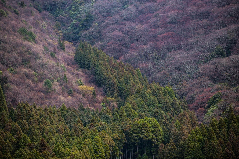 japan-yufuin-4.jpg