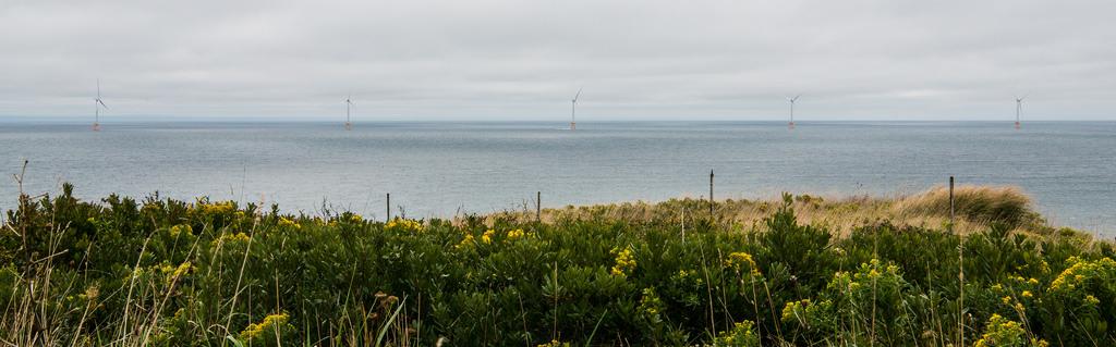 Photo: National Renewable Energy Lab,  creative commons