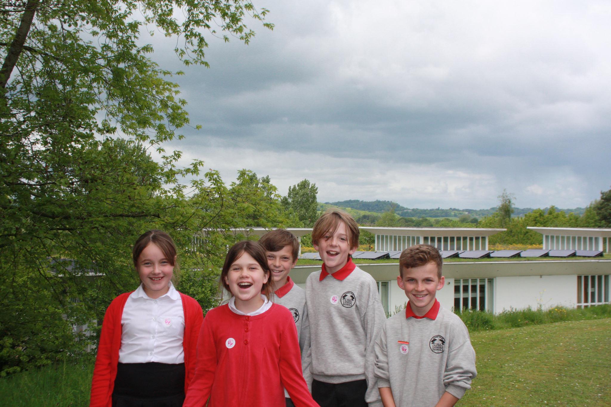 Liss primary school's solar panels