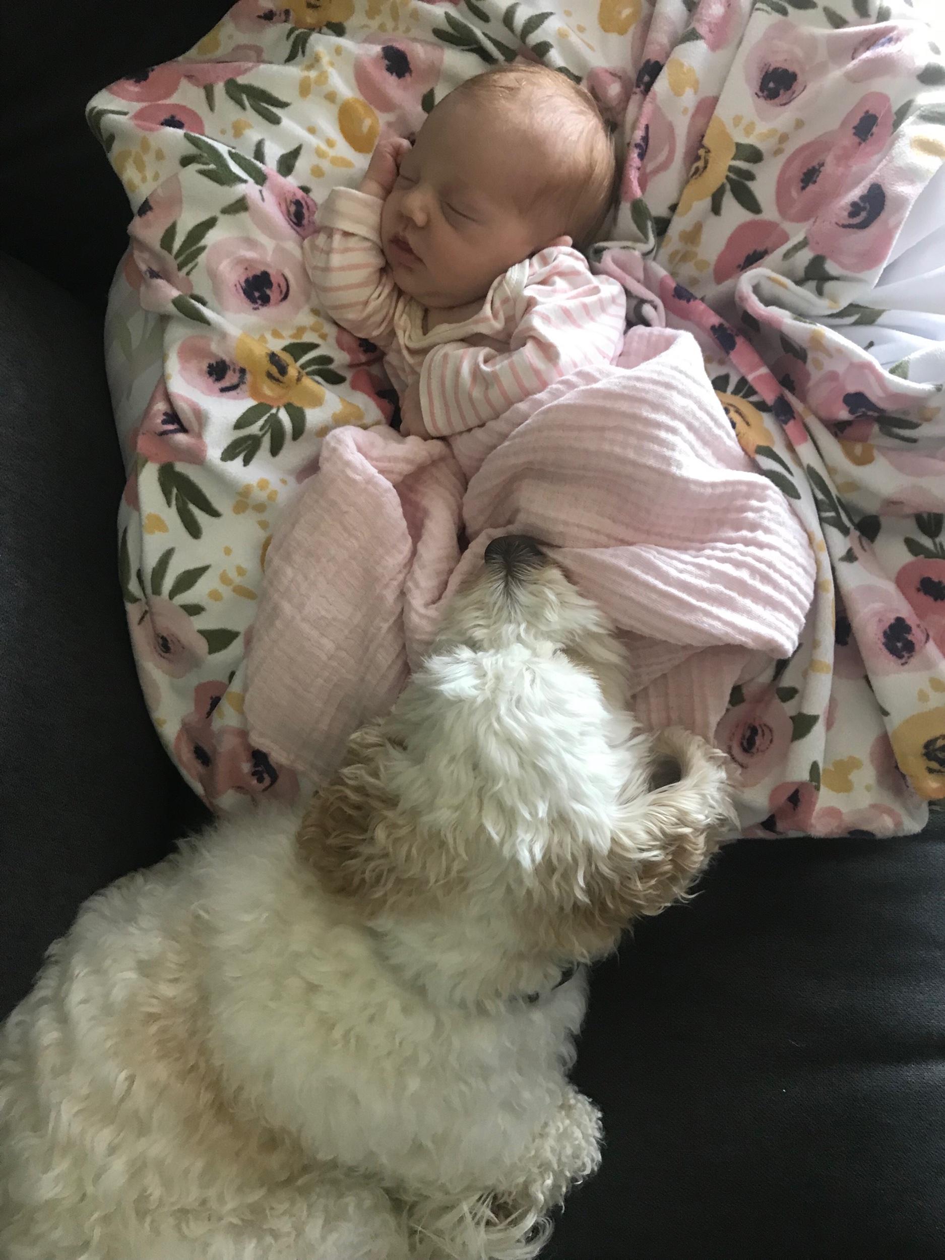 Loves her baby sister !