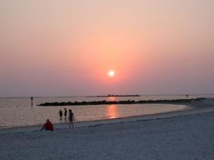 xft_island_beach.jpg.pagespeed.ic.ZyuTHEV3lc.jpg