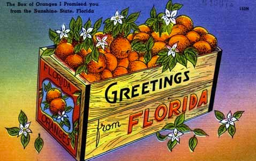 greetings_from_floridas_nature_coast.png
