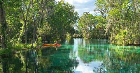 Citrus County Springs.jpg