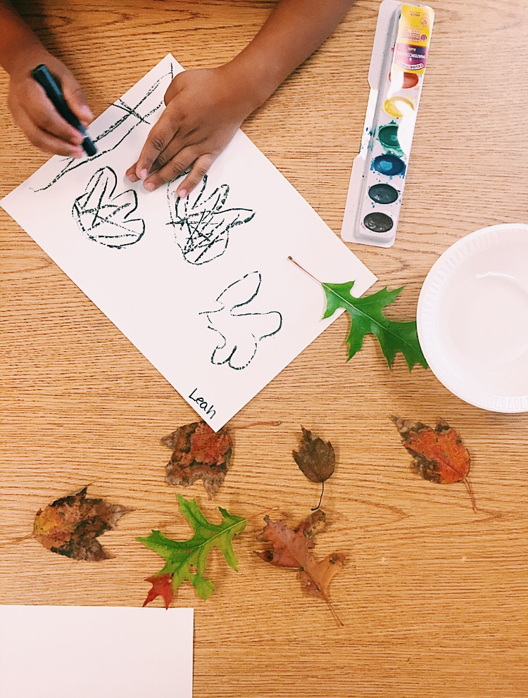 Five year old student learning to draw through observation