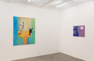Rosalind Nashashibi, DEEP REDDER, Ausstellungsansicht, Secession 2019, Foto: Oliver Ottenschläger