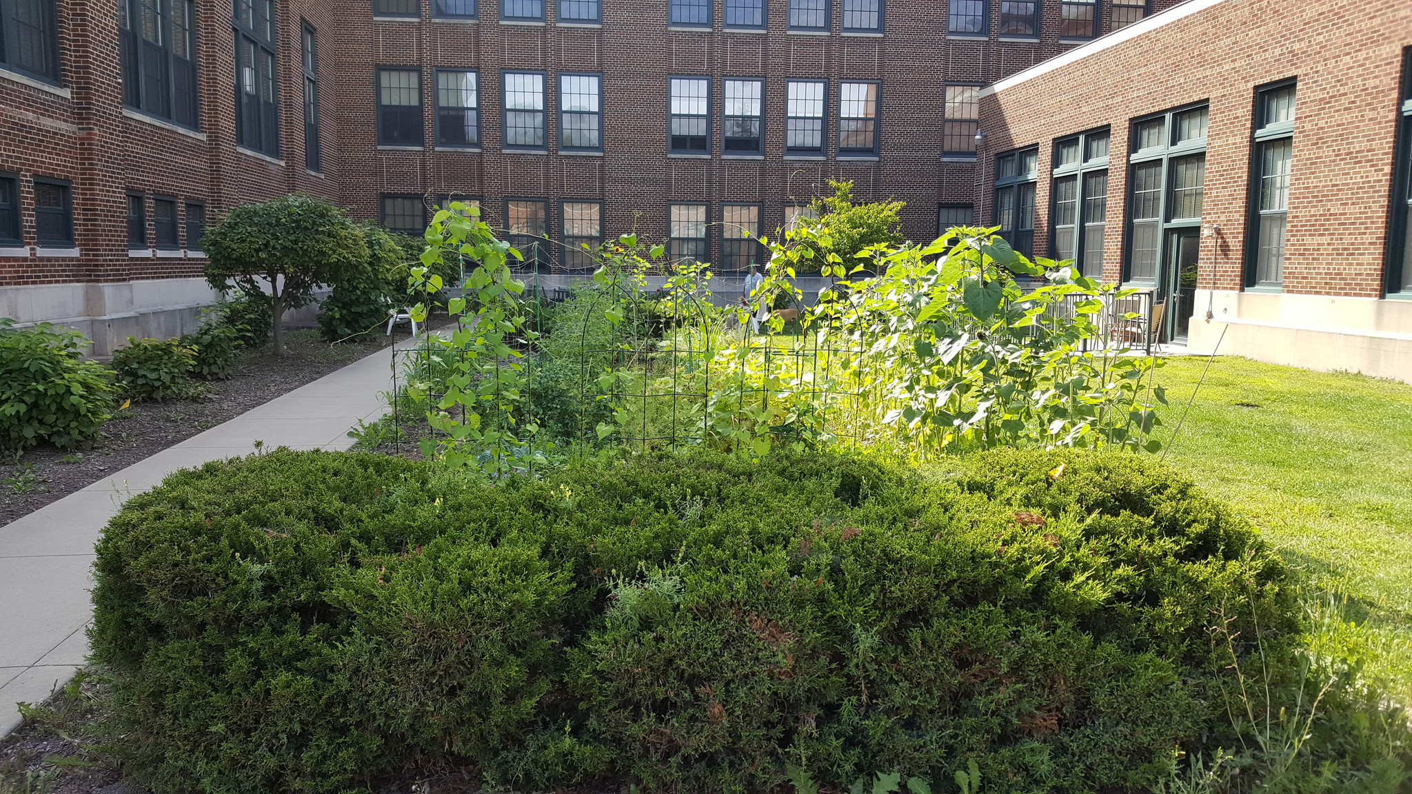 east-high-apartments-and-townhomes-wausau-wi-east-high-community-gardens.jpg