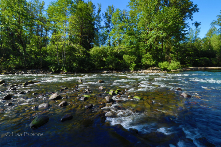Low Summer Flows Are Already Here