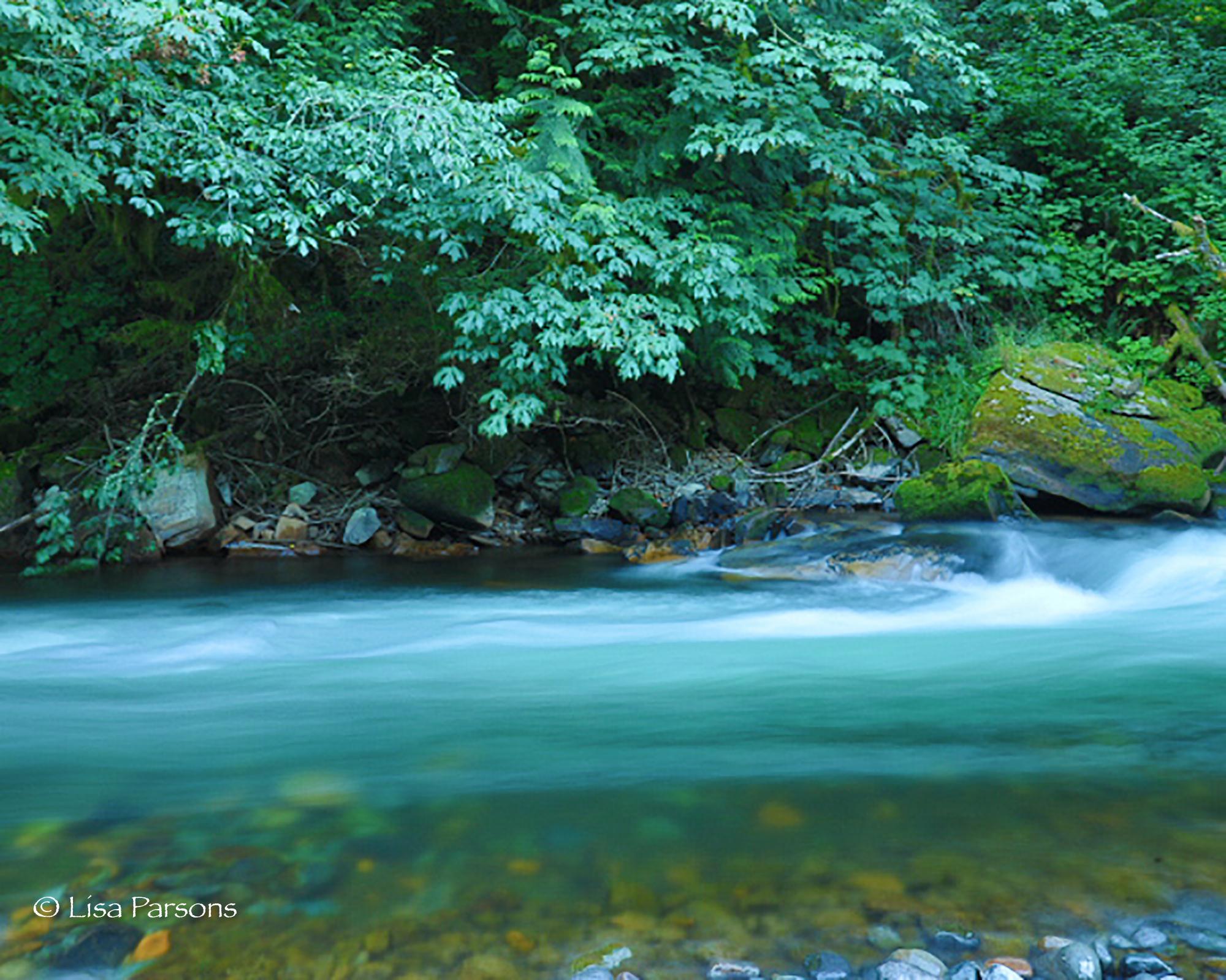 Spirit of Water
