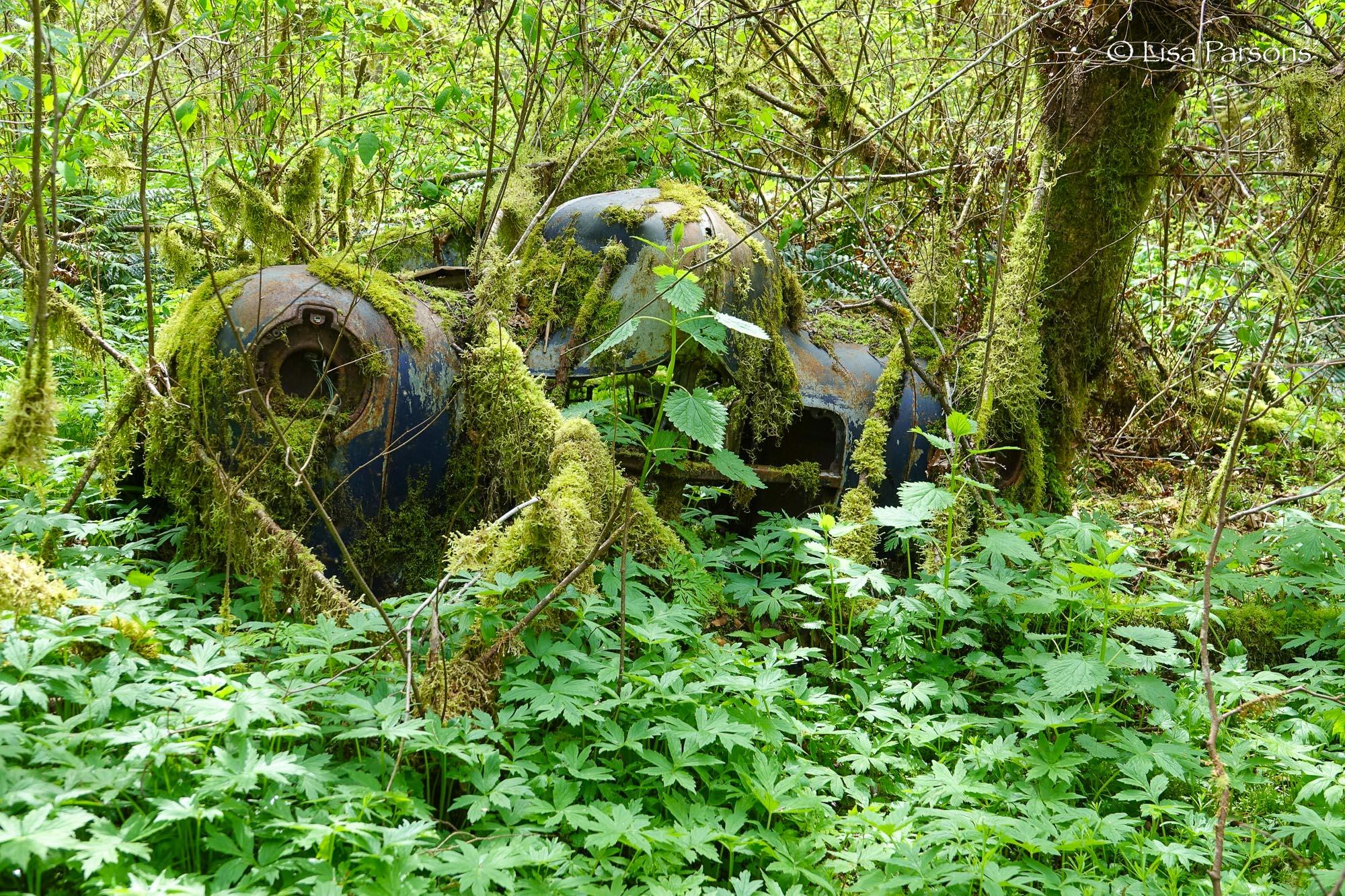 Old Abandoned Vehicle