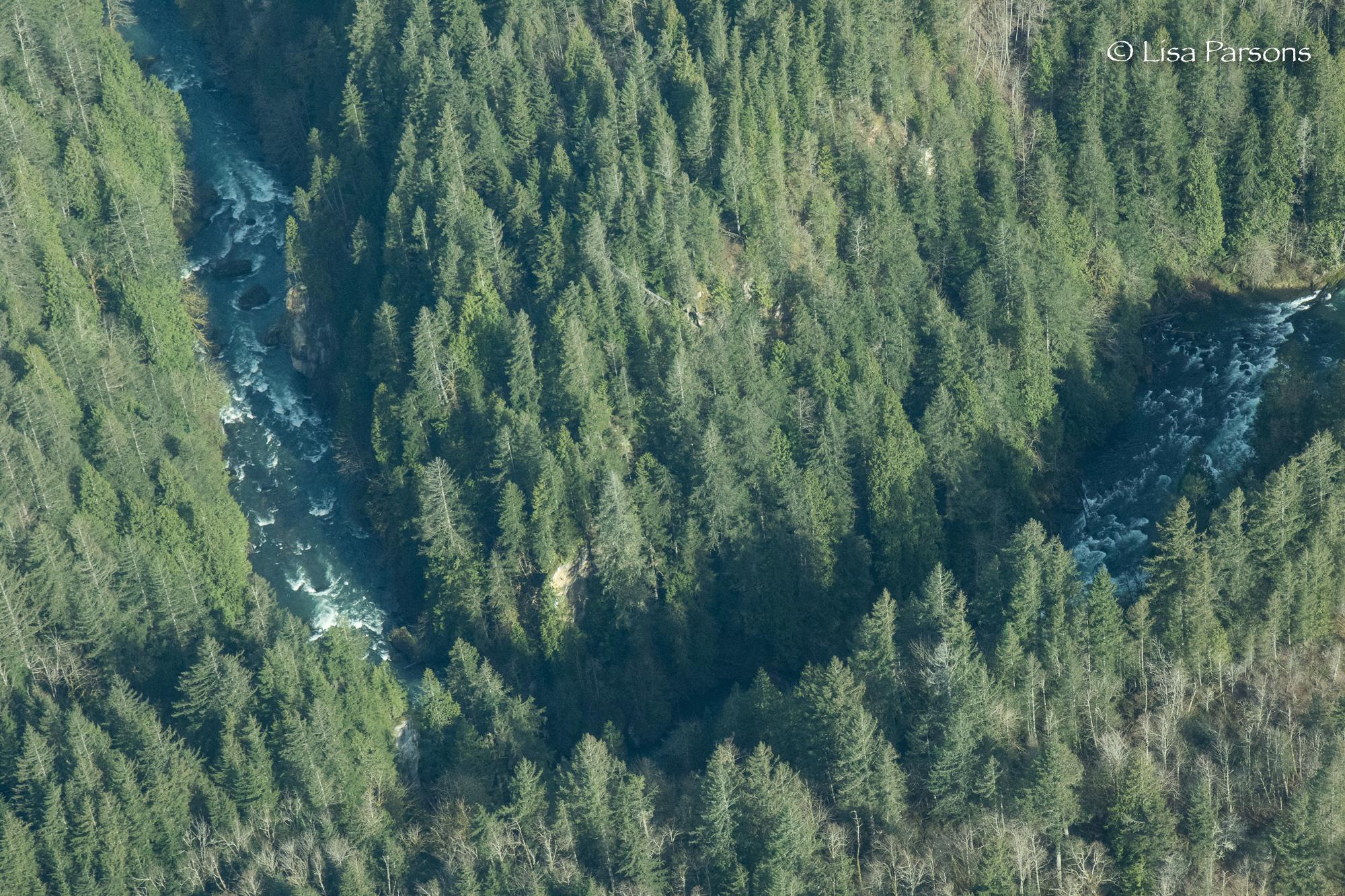 Aerial Gorge-22.jpg