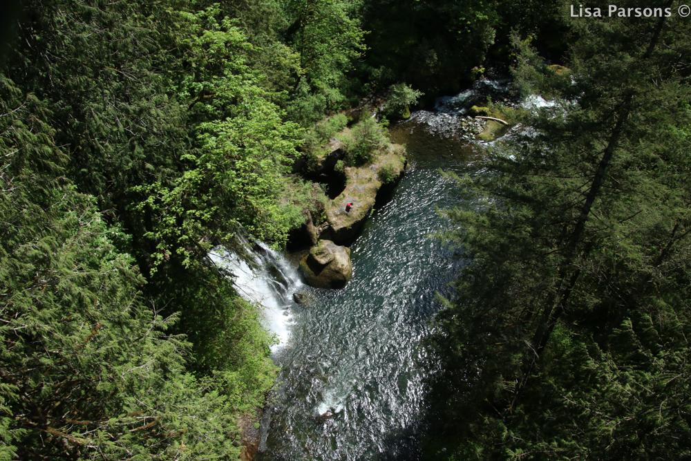 Spring Gorge