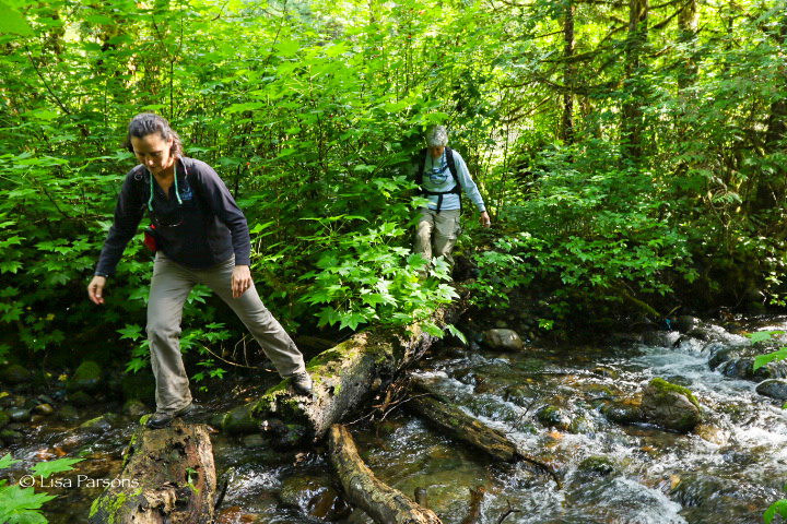 Hiking the Green River Gorge looking for otter poop with scientist, Michelle Wainstein of the Otter Spotter program