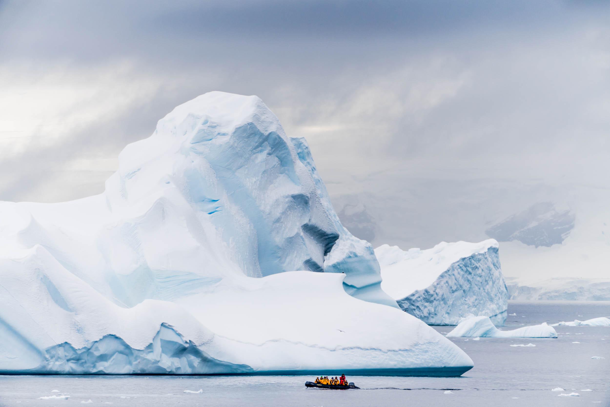 Antarctica Copyright Fraser Morton_DSC8132.jpg