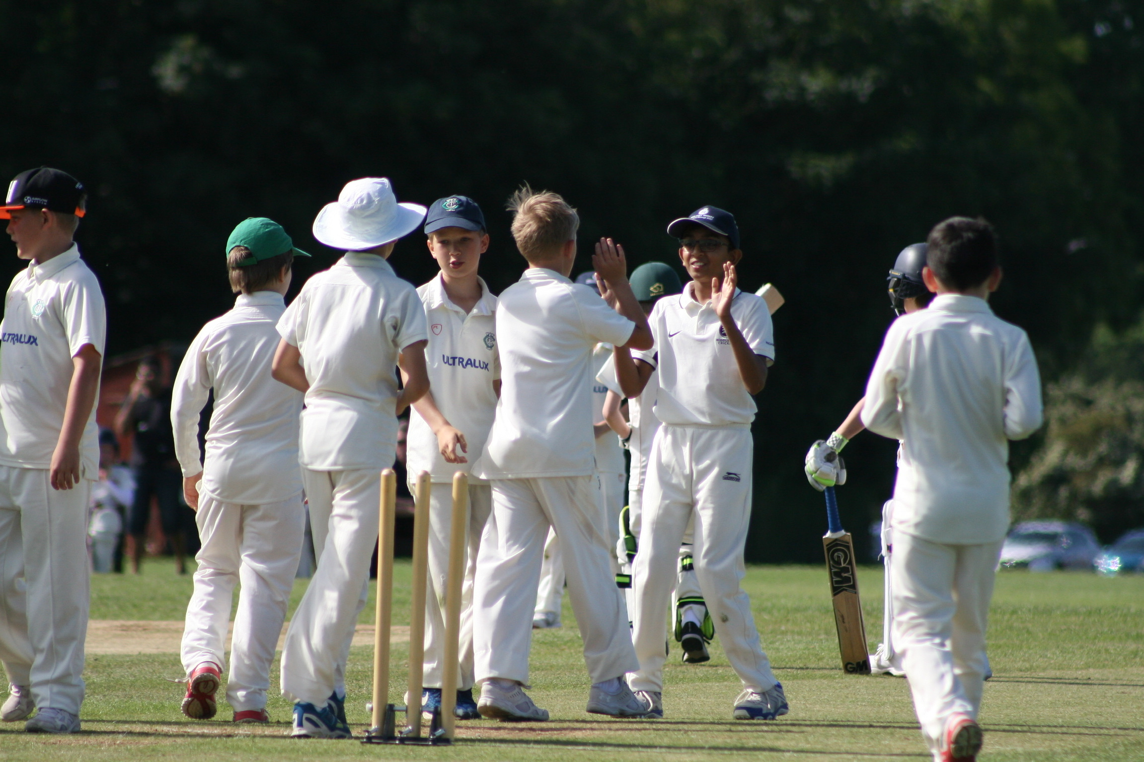 Teddington celebrate a Swiss wicket