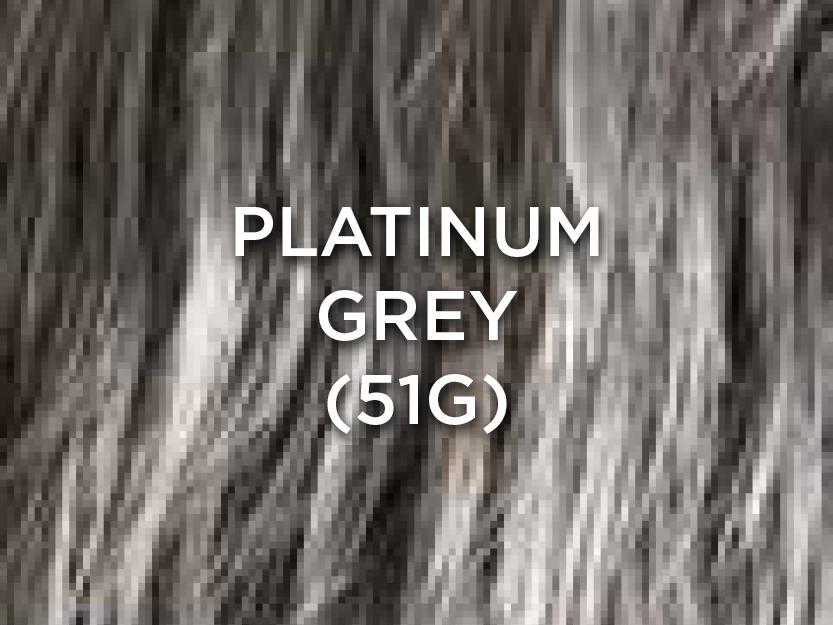 PlatinumGrey.jpg