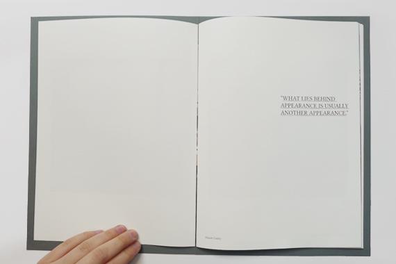 vbax_book_04.jpg