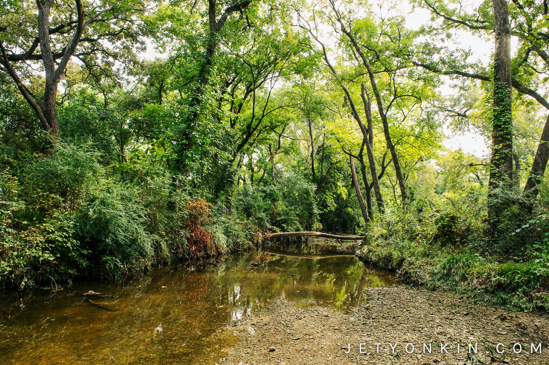 Bachman Creek Greenbelt, Dallas, TX