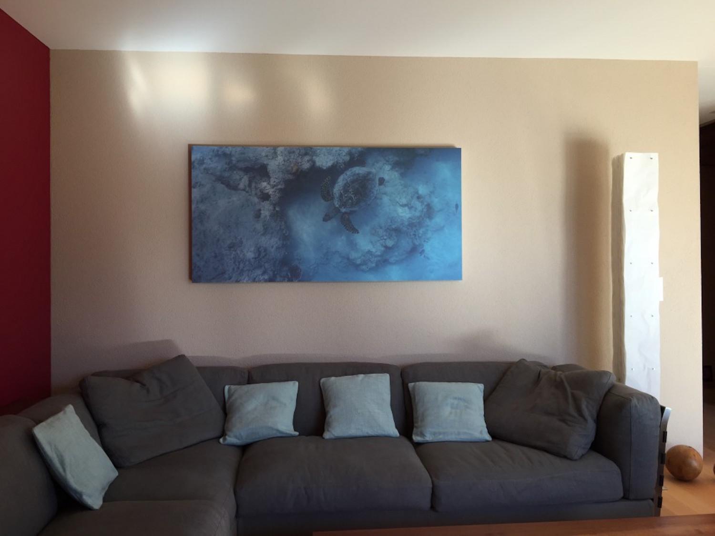 Kopie von Unterwasserfotografie als Akustikbild im Wohnzimmer