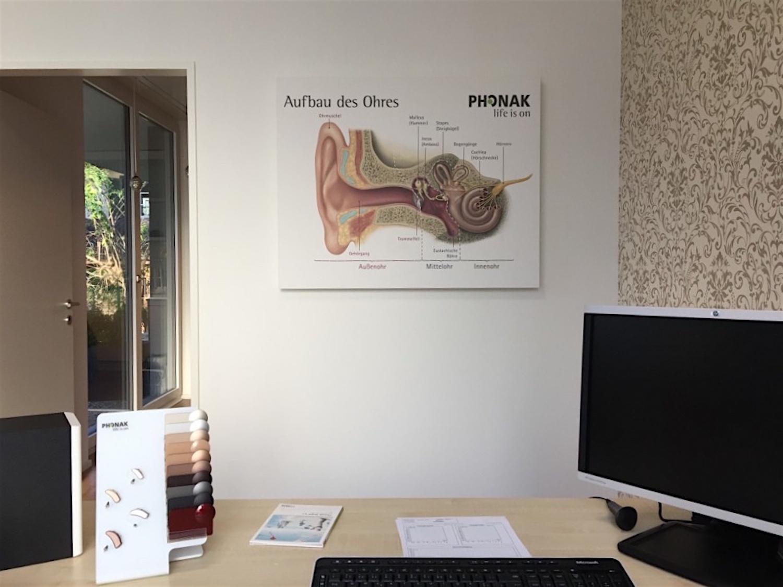 Kopie von Akustikbild mit Phonak-Motiv in Hörberatung