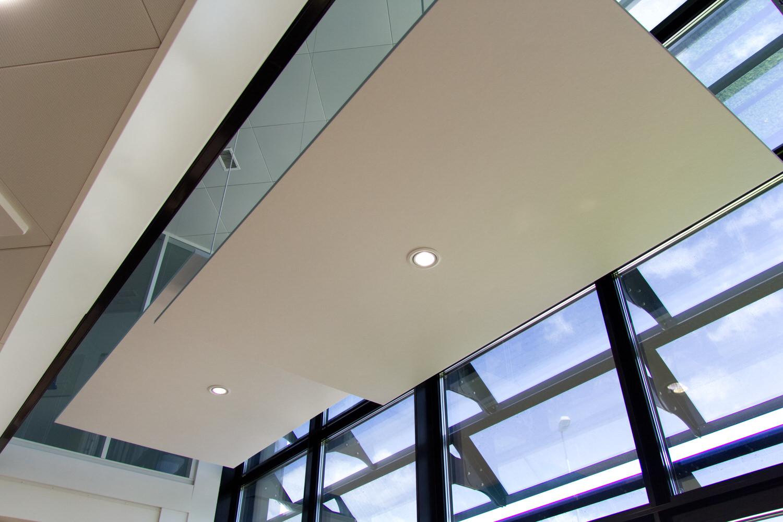 Echojazz-Platte mit integrierter Lichtquelle