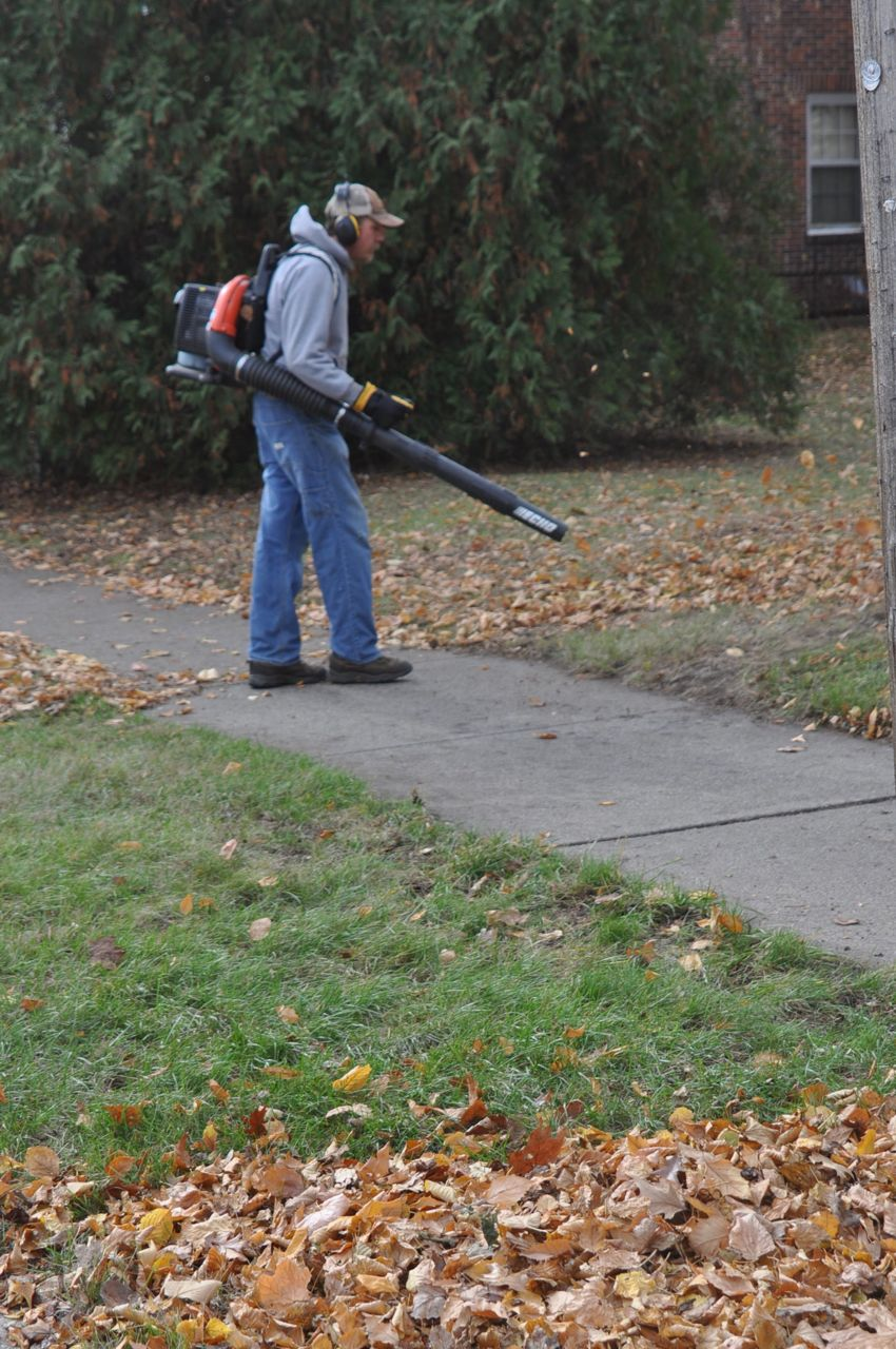 fall_leaf_clean_up_blowing_services_minneapolis.jpg