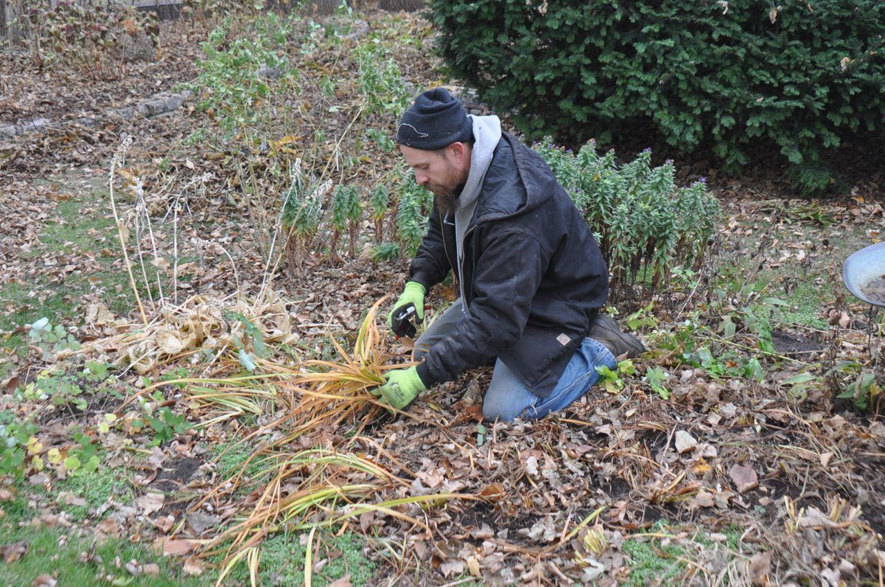 fall_perennial_cut_backs_garden_clean_up.jpg