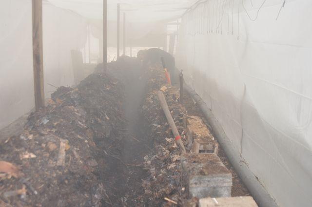 steamy_composting.jpg