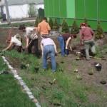 PageLines- Community_Design_Forum_Rain_Garden_Installation.jpg