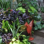 Organic_Home_Gardens