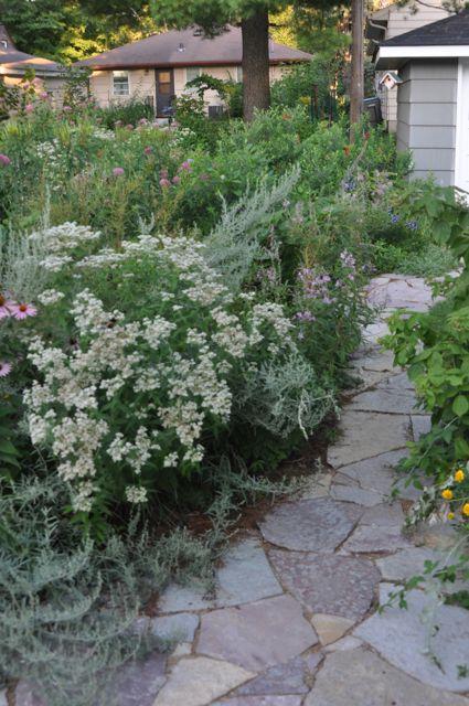 butterfly_gardening_installations.jpg