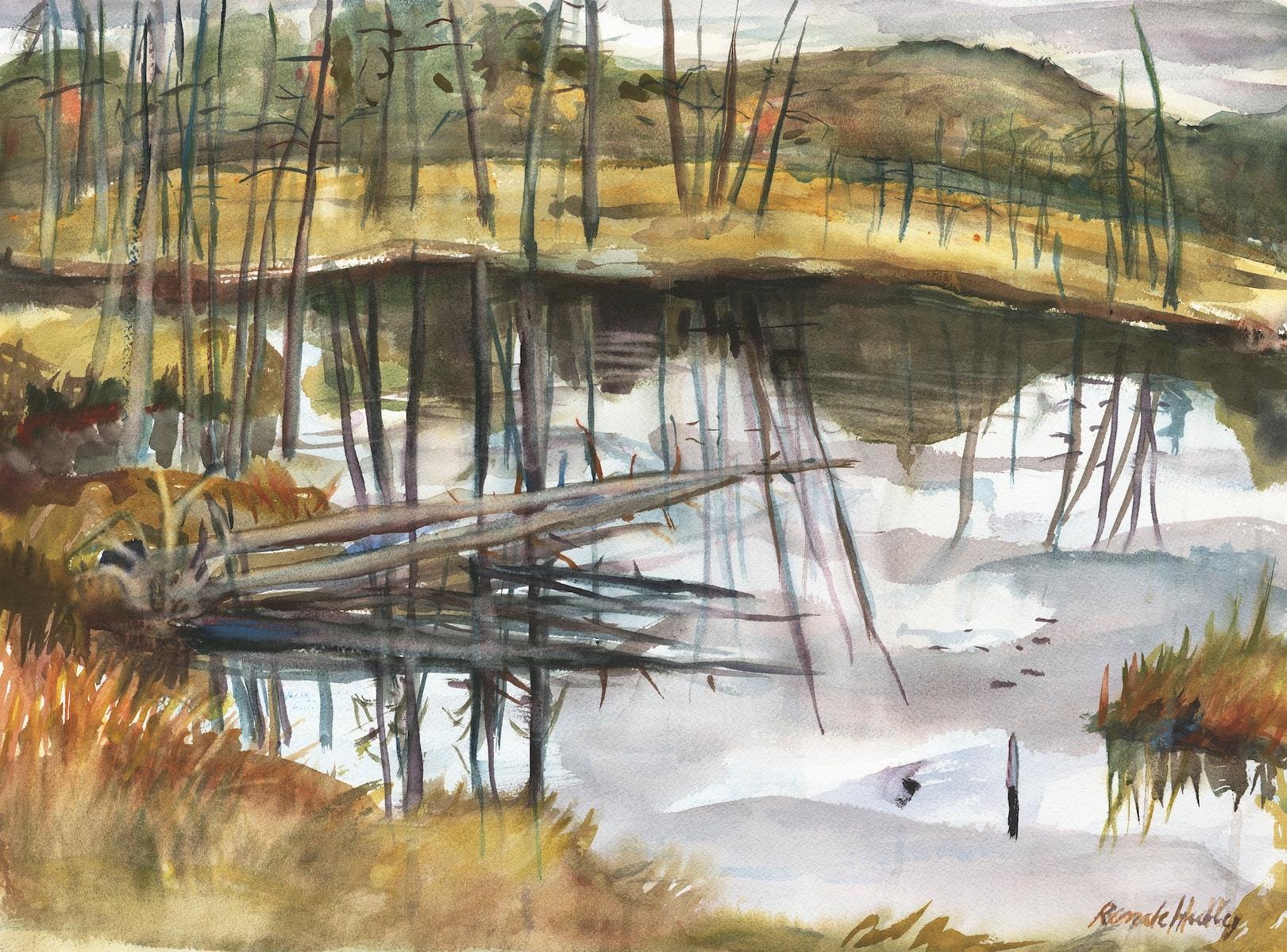 Swamps of Eganville