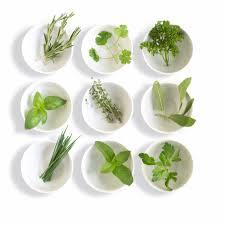 Image: British herbs
