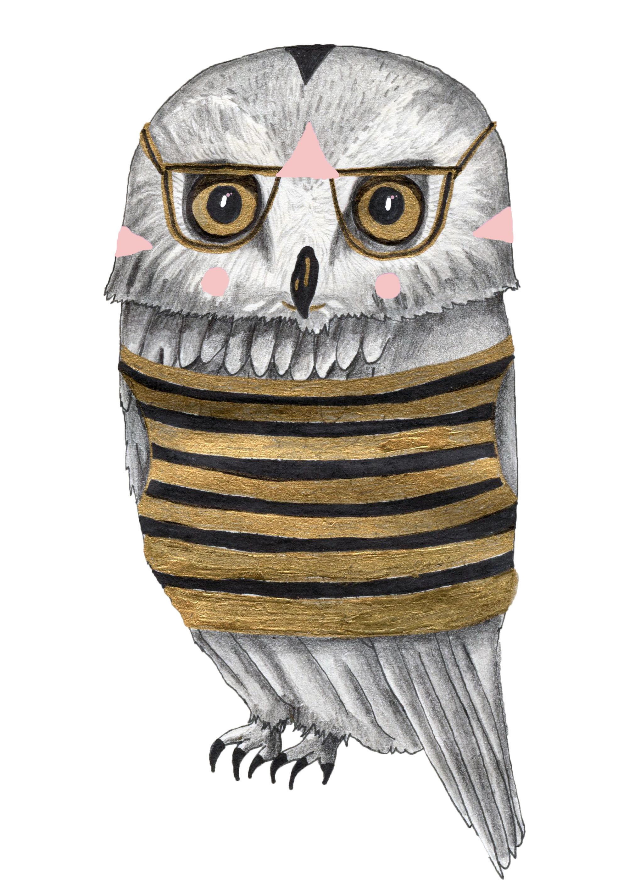 Stripy Owl