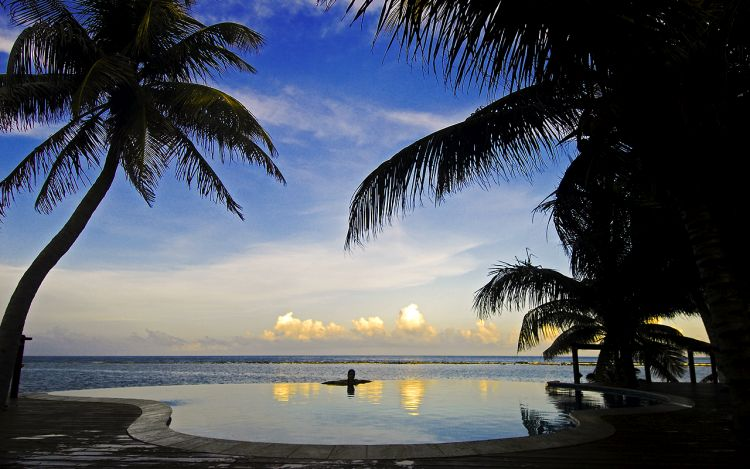 Relaxin the infinity pool and watch bonefish swimming