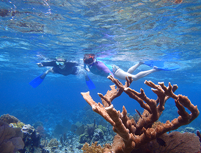 snorkeling fun for everyone only at Turneffe Flats