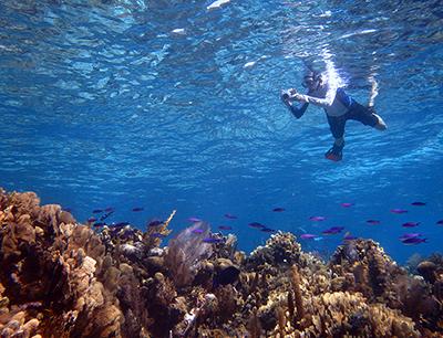 Belize snorkeling adventures at Turneffe Flats