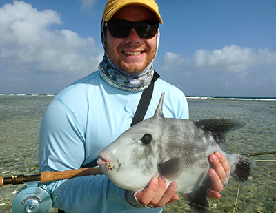Fly Fishing in Belize - Trigger fish