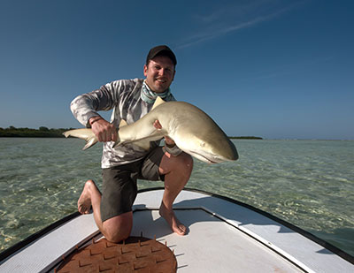 Fly Fishing for sharks in Belize