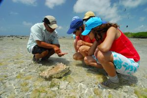 Atoll Adeventures at Turneffe Flats | Eco-adventures in Belize