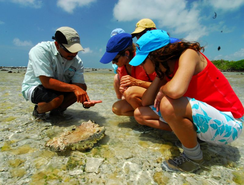 Eco adventure lodge Belize