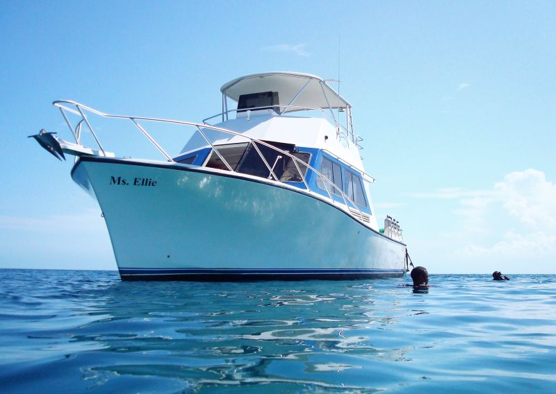 Ms. Ellie our custom boat for scuba diving