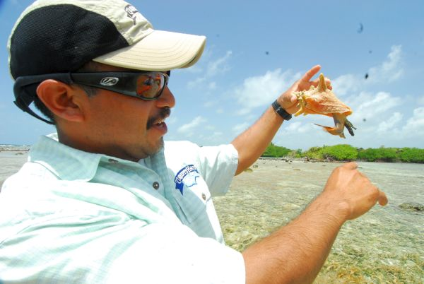 Eco-tours on the flats of Turneffe Atoll